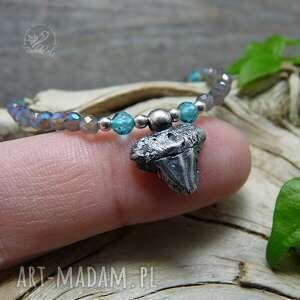srebro srebrne ząb rekina
