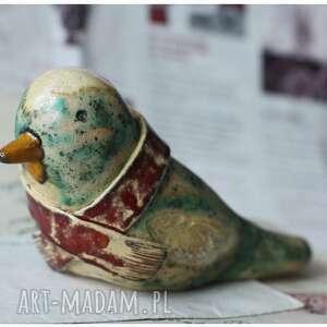 ciekawe ptak ptaszek w szaliczku