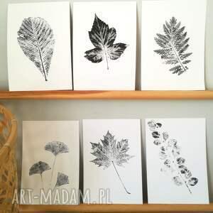 ciekawe dekoracje roślina 6 x print roślinny