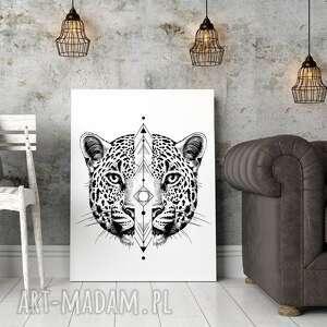 Plakat obraz gepard 50x70 cm B2 - lew kot