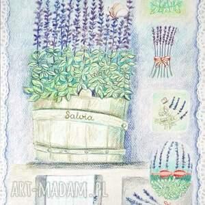unikalne obrazy zioła grafika szałwia 34 x 46 wykonana