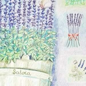 fioletowe ziołowe obrazy grafika szałwia 34 x 46 wykonana
