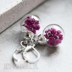 różowe kolczyki 925 srebrne gipsówka