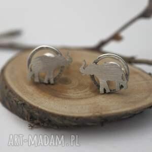 słonie srebrne kolczyki