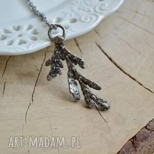 biżuteria roślinna naszyjniki gałązka cedru - naszyjnik