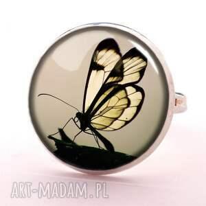 gustowne naszyjniki motylem motyl w sepii - medalion z