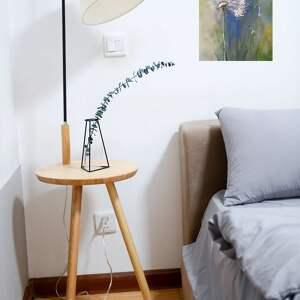 eleganckie dmuchawiec - obraz akrylowy formatu