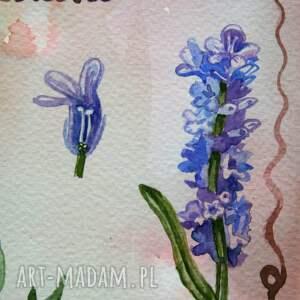 akwarela lawenda tablica botaniczna