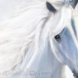 LiliArts Obraz - Biały koń 2 - płótno - malowany