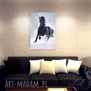 oryginalne obrazy obraz - czarny koń płótno