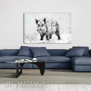białe dzik obraz do salonu - 120x80cm pejzaż