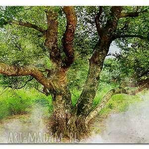 obraz drzewo 37 - 120x70cm