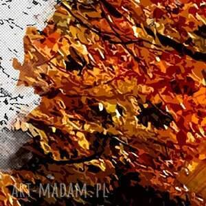 szare las ważne -możliwość zmiany wymiaru lub koloru