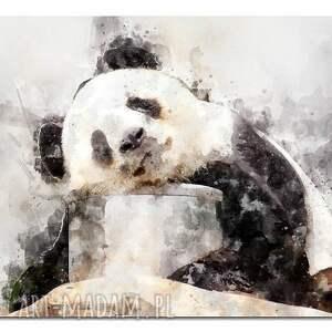 niesztampowe obrazy obraz duże panda 1 -120x70cm