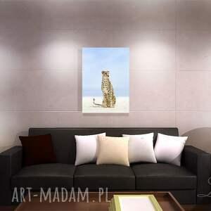 brązowe afrykański obraz - gepard - płótno