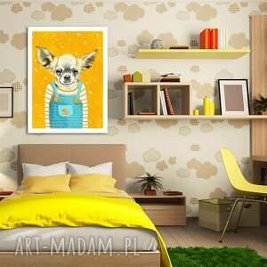 intrygujące chihuahua obraz na płótnie - 60x80cm pies