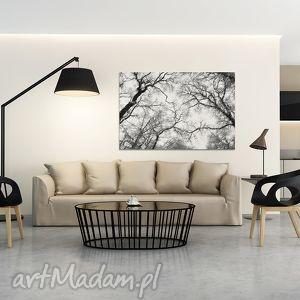 białe konary design: piękny obraz o nowoczesnym, niebanalnym