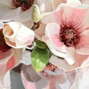 magnolie obraz na płótnie w wazonie