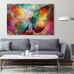 kolorowy obrazy obraz na płótnie - motyl