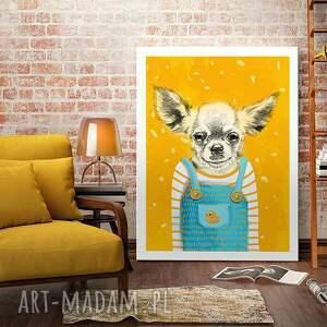 chihuahua pomarańczowe obraz na płótnie - 60x80cm pies