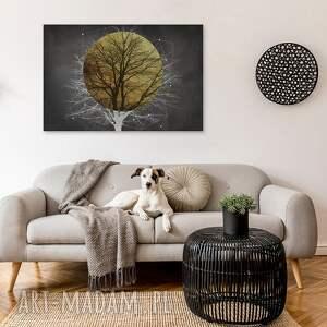 drzewo białe obraz na płótnie - słońce