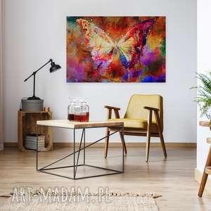 obrazy skrzydła obraz na płótnie - motyl