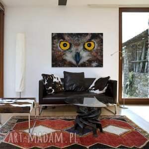 oczy obrazy obraz na płótnie - sowa