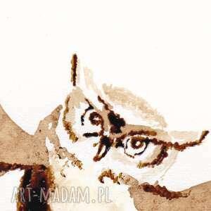 niepowtarzalne obrazy sowa sówka strażniczka - obraz kawą