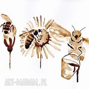 obrazy coffepainting trzy pszczoły robotnice - obraz