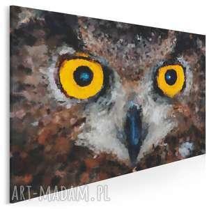 obraz na płótnie - sowa oczy 120x80 cm 01701, sowa, oczy, wzrok, dziki