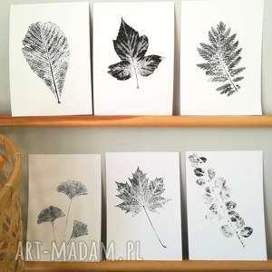 6 x odcisk liścia, roślina, liść, leśny, odcisk, obraz, plakat