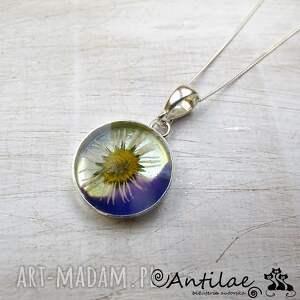 wisiorki papatya - polny kwiatek, żywica, srebro, kwiat, naszyjnik