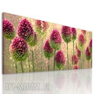 obraz drukowany na płótnie kwiaty - czosnek w ciepłych barwach -format 150x60cm