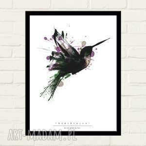 Humingbird Painted Plakat 50x70, plakat