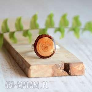 drewniany pierścionek - modrzew i srebro