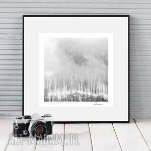 autorska fotografia, zimowy pejzaż iv, zdjęcie, prezent, dekoracja, las