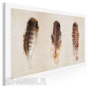 obraz na płótnie - pióra 120x80 cm 01903, pióra, ptak, natura, pióro, ramka