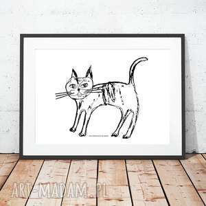Kotek plakat, plakat z kotkiem, biało czarny kotem, kot fajna