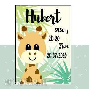 plakat metryczka z żyrafą, dla dziecka, obraz