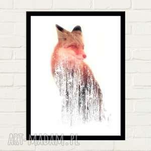 FOX Plakat 50x70, plakat