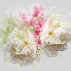 Renata Bulkszas! Obrazy kwiaty na płótnie Piwonie 100 x 80