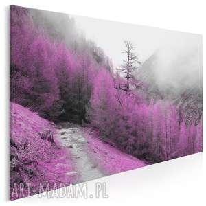 obraz na płótnie - las góry fiolet 120x80 cm 24101, las, ametystowy, szlak