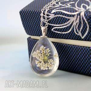 biały kwiat - przezroczysty, kwiat, szkło, elegancki, owalny, lekki