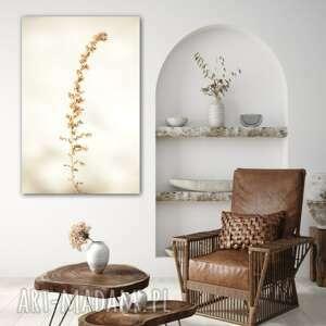 simple nature - foto obraz, trawy, natura, minimalizm, przyroda, obraz
