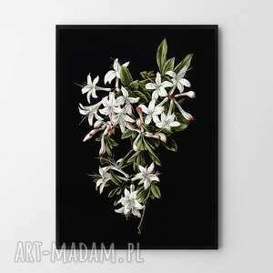 plakat obraz black flower a2 - 42x59 4cm, kwiaty, czarne obrazy