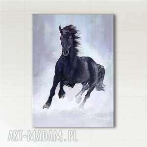 Obraz - czarny koń wydruk na płótnie liliarts obraz, koń, konie,