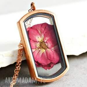 rosa damascena pozłacany na różowo naszyjnik medalion - medalion, kwiat