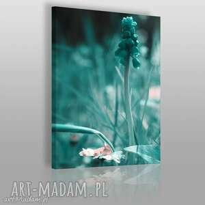 obrazy obraz na płótnie - łąka turkus 50x70 cm 08501, łąka, kwiat, miętowy, mięta