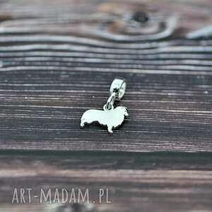 owczarek szetlandzki / sheltie - zawieszka charms, pies, srebrny