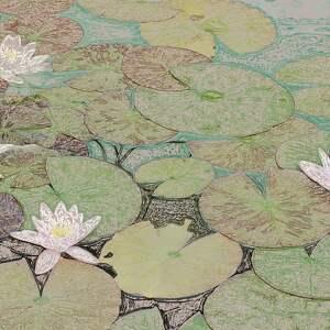Grafika na płótnie lilie wodzie, 120 x 70, obrazy natury
